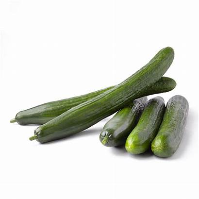Cucumbers English Produce Cucumber Singles Farms Seedless
