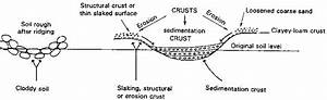 Wiring And Diagram  Diagram Of Wind Erosion