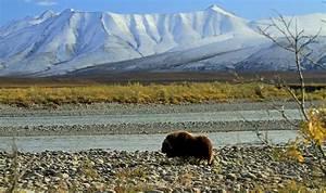 Visit Northwest Territories  Canada