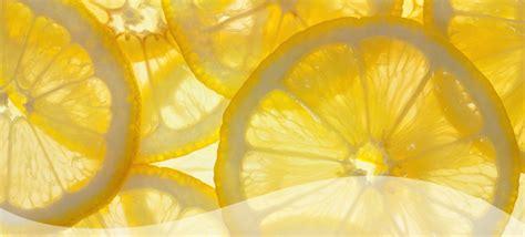 sensient colors sensient flavors sensient technologies