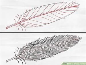Dessin De Plume Facile : drawn lines feather pencil and in color drawn lines feather ~ Melissatoandfro.com Idées de Décoration