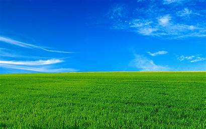 Bliss Desktop Wallpapers Widescreen Background 1080p Backgrounds