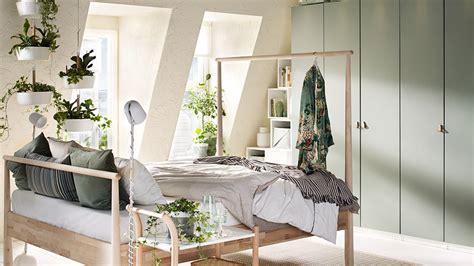 plante dans la chambre 10 bonnes résolutions à prendre dans sa chambre
