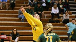 Clarkson University Women's Volleyball Golden Knights ...
