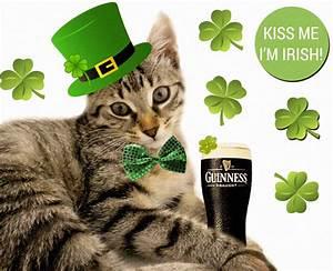Happy St Patrick's Day! | The Paris Cat