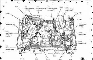 Ej22 Iac Wiring Diagram