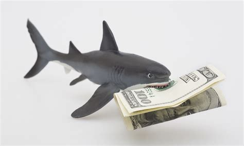 If The Uk Can Take On Loan Sharks, We Can Too