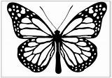 Butterfly Coloring Pages Clipart Butterflies Printable Drawing Clip Monarch 3d Line Fun Cliparts Drawings sketch template
