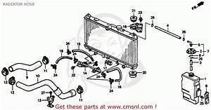 Honda Insight Fuse Box Cover  Honda  Auto Wiring Diagram