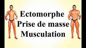 Musculation Pour Les Ectomorphes - Prise De Masse