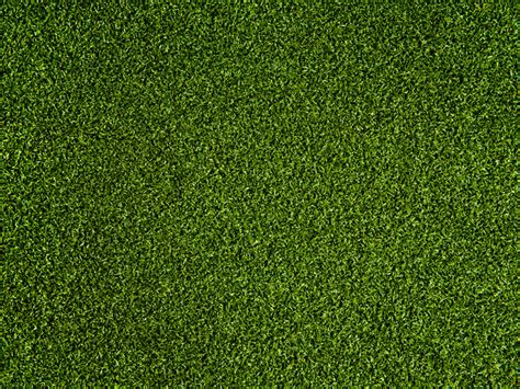 putting in a lawn putting green grass texture www pixshark com images galleries with a bite