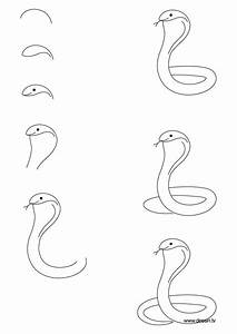 Snake Drawing Step By Step At Getdrawings