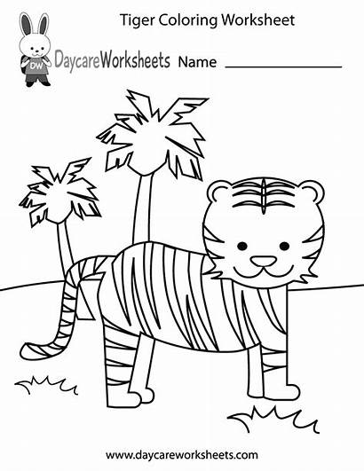 Preschool Worksheets Worksheet Coloring Printable Tiger Colouring