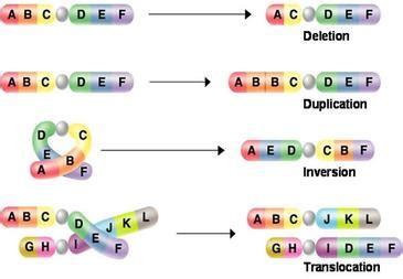 mutations adv bio