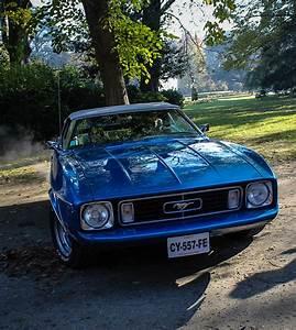 Mustang 73 | Ford Mustang de 1973 au jardin du Grand Rond | Xavier Wattez | Flickr