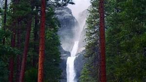 Download, Wallpaper, 2560x1440, Waterfall, Rocks, Trees