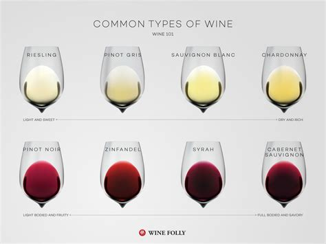 Common Types Of Wine (top Varieties To Know)