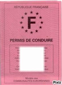 Cadeau Permis De Conduire : montage photo permis de conduire pixiz ~ Medecine-chirurgie-esthetiques.com Avis de Voitures