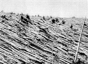 Hyperborean Vibrations: The Tunguska event