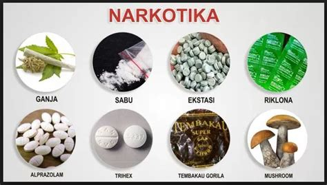 pengertian narkotika psikotropika  zat adiktif