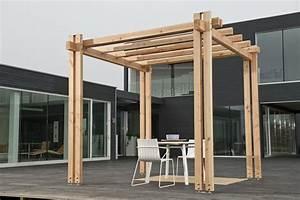 Pergola Elemente Holz : pergola vision 300 x 500 x 271cm douglasie unbehandelt holz stahlhandel h schenk gmbh ~ Sanjose-hotels-ca.com Haus und Dekorationen