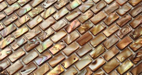 Seashell Tile Backsplash : Shell Mosaic Tiles Black & White Mother Of Pearl Tile