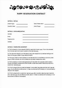 Pin puppy sales contract on pinterest for Dog breeding contract template