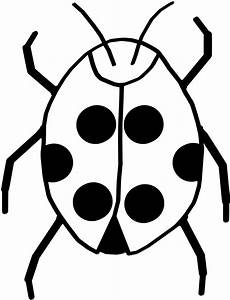 Bug Clipart Black And White - ClipArt Best