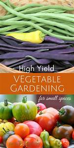 The Secrets To High Yield Vegetable Gardening In Small
