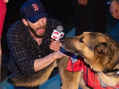 Chris Evans' fans flooded Twitter with puppy photos as a ...