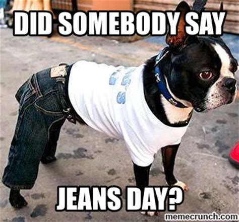 Jeans Meme - did somebody say jeans day