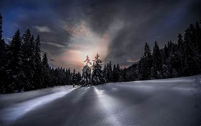 Forest Winter Night Sky Background Wallpapers 1920