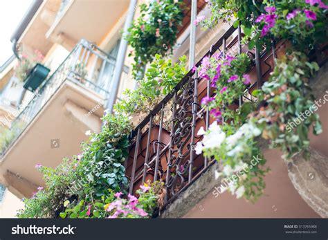 Balcony Sill by Window Sill With Flowers On Metal Balcony Railing Imagen