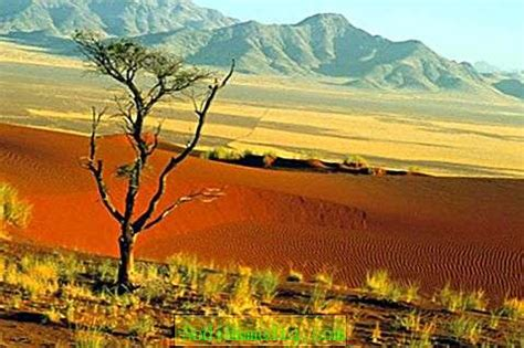 Āfrikas stāvoklis attiecībā pret citiem kontinentiem un ...
