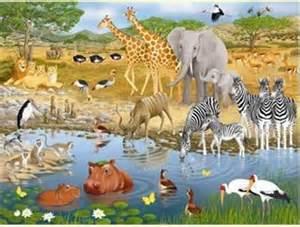 African Animals Kids