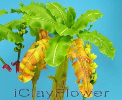HandmadeClayFlower: ต้นกล้วยดินญี่ปุ่น (1) - Handmade Clay ...