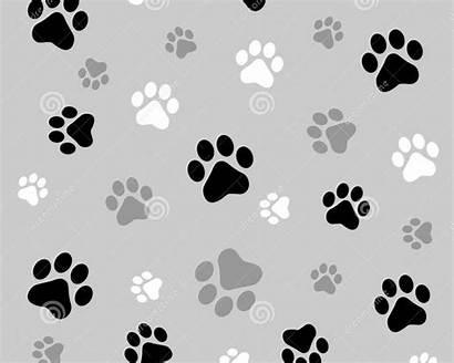 Paw Desktop Prints Cat Background