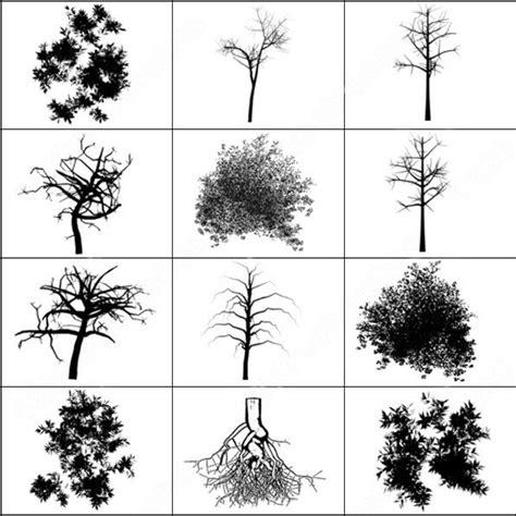 Tree Brush Photoshop Brushes In Photoshop Brushes Abr