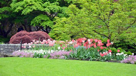 Besondere Bäume Für Den Garten by Die 70 Besten Hintergrundbilder Fr 252 Hling