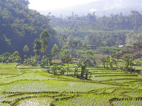 comprehensive  java indonesia travel itinerary