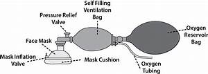 Difference In Manual Ventilation  Self