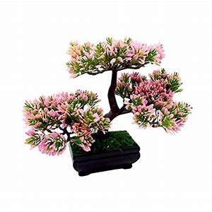 Pflanzen und andere gartenausstattung von vorcool online for Feuerstelle garten mit bonsai fürs büro