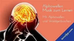 Musik Zum Lesen : lernmusik musik zum lernen lesen und konzentration mit alphafrequenz 06 youtube ~ Orissabook.com Haus und Dekorationen