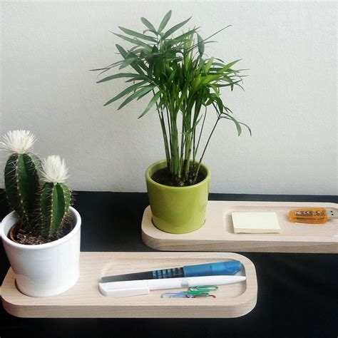 plante de bureau 28 images 5 houseplants the fancy