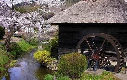 Japan Trees Spring Cherry Barn Flowers Wallpapers