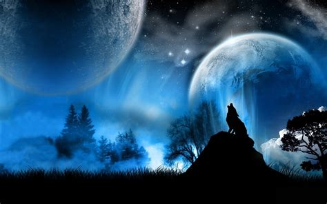3d Wallpapers Wolf by Hq Wallpapers 3d Wolf Photos