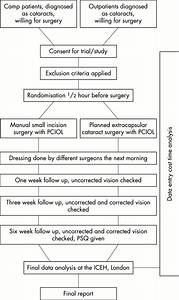 Extracapsular Cataract Surgery Compared With Manual Small