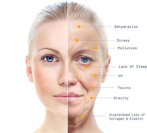 Skin Through The Yearsaging Skin Care Tips. Nipples Signs. Perfectionist Signs Of Stroke. Traffic Bangalore Signs Of Stroke. Voltage Signs. Winnie Palmer Signs. Magnesium Deficiency Signs Of Stroke. Dark Blue Signs. Kung Fu Signs