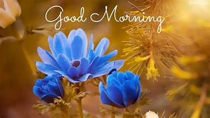 Morning 4k 1080p Gd Mrng Wallpapers