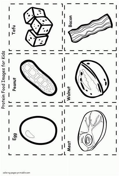 Coloring Pages Healthy Printable Protein Colouring Template
